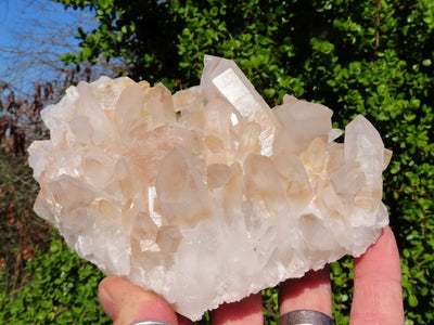 Natural Mixed Quartz Crystal Clusters x 6 from Madagascar