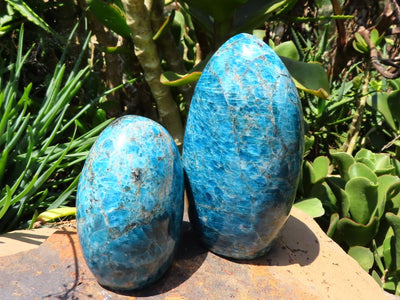 Polished Medium to Large Blue Apatite Standing Freeforms x 2 from Madagascar