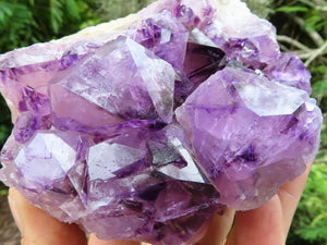 Natural Deep Purple Amethyst Spirit Quartz Cluster x 1 from KwaNdebele, South Africa