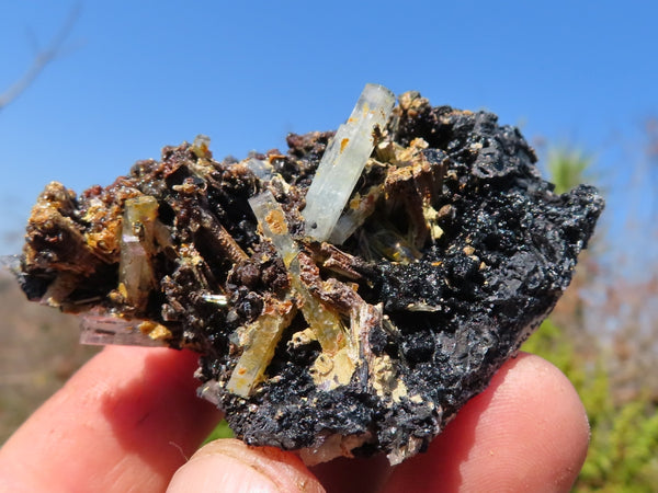 Natural Small Black Tourmaline With Feldspar, Quartz & Aquamarine Crystals x 12