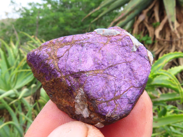 Natural Small Deep Purple Purpurite Rough Chunks x 70 from Erongo, Namibia