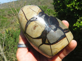Polished Septerye / Dragon Stone Egg x 1 and Standing Freeform x 1 from Madagascar