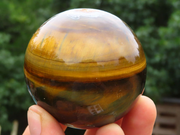 Polished Small Gold & Variegated Tigers Eye Balls x 6 from Prieska, South Africa