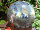 Polished Large Labradorite Ball x 1  from Tulear, Madagascar - TopRock