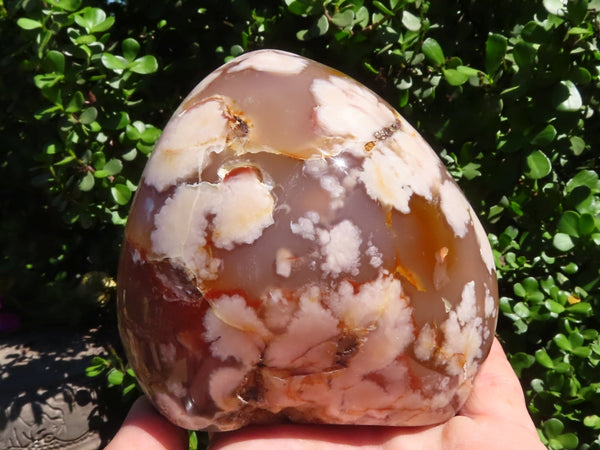Polished Large Coral Flower Agate Standing Free Form x 1 from Mainterano, Madagascar