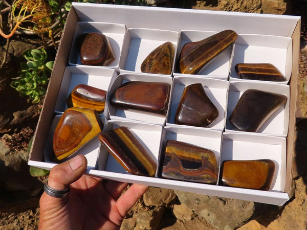 Polished Tigers Eye Free Forms x 12 from Prieska, South Africa