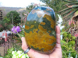 Polished Ocean Jasper Standing Free Form x 1 from Madagascar