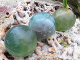 Polished Small Emerald Green Fluorite Spheres x 12 from Madagascar
