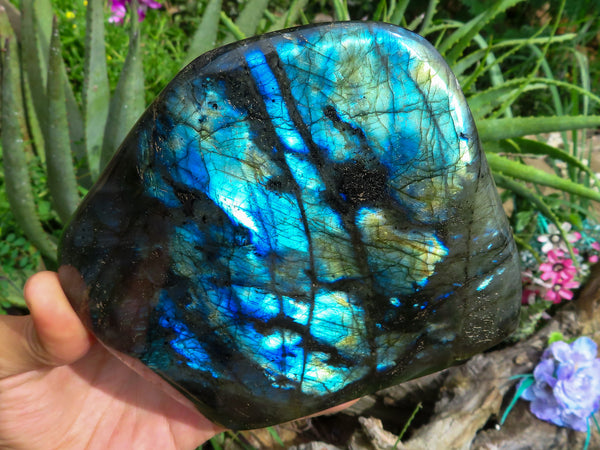 Polished Large Labradorite Standing Free Form x 1 from Madagascar