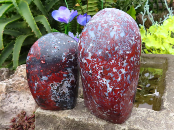 Polished Flower Jasper Standing Free Forms x 2 from Skeleton Coast, Namibia