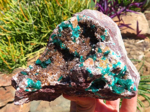 Natural Large Dioptase Specimen In Dolomite Crystal x 1 from Brazzaville, Congo
