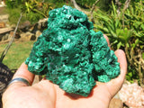Natural Classic Stalactite & Silky Malachite Specimens x 2 from Congo
