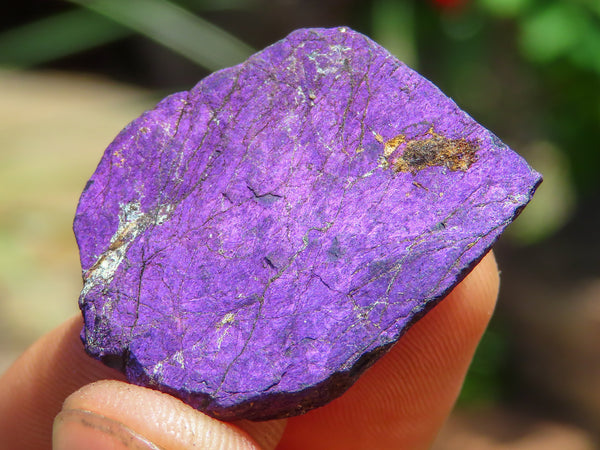 Natural Small Purple Purpurite Specimens x 70 from Vis, Namibia