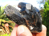 Natural Black Tourmaline / Schorl Specimens x 12 from Erongo, Namibia