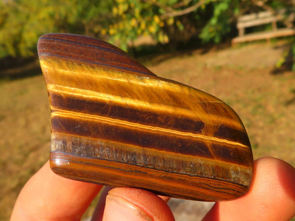 Polished Lovely Tigers Eye Golden Slabs x 35 from Prieska, South Africa