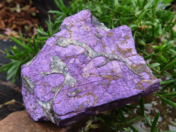 Natural Small Purpurite Chunks x 28 from Erongo, Namibia
