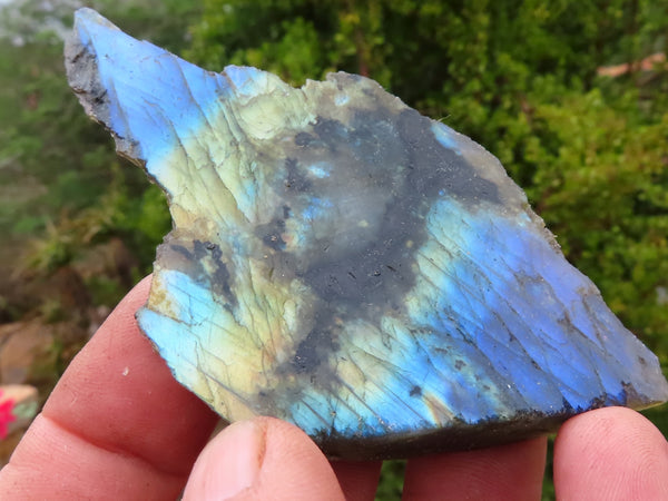 Polished One Side Small Labradorite Slabs x 24 from Madagascar