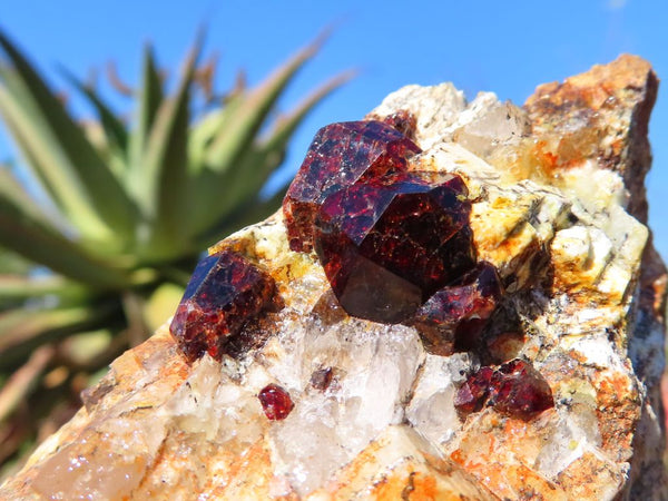 Natural Pyrope Garnet Crystal In Matrix x 6 from Betrokke, Madagascar