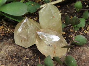 Polished Citrine Quartz Crystals x 35 from Zambia