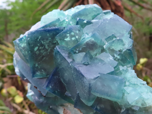 Natural Large Fluorite Specimens x 2 from Mandrosonoro, Madagascar