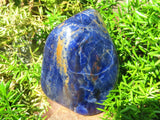 Polished Small to Medium Sodalite Freeforms x 6 from Namibia
