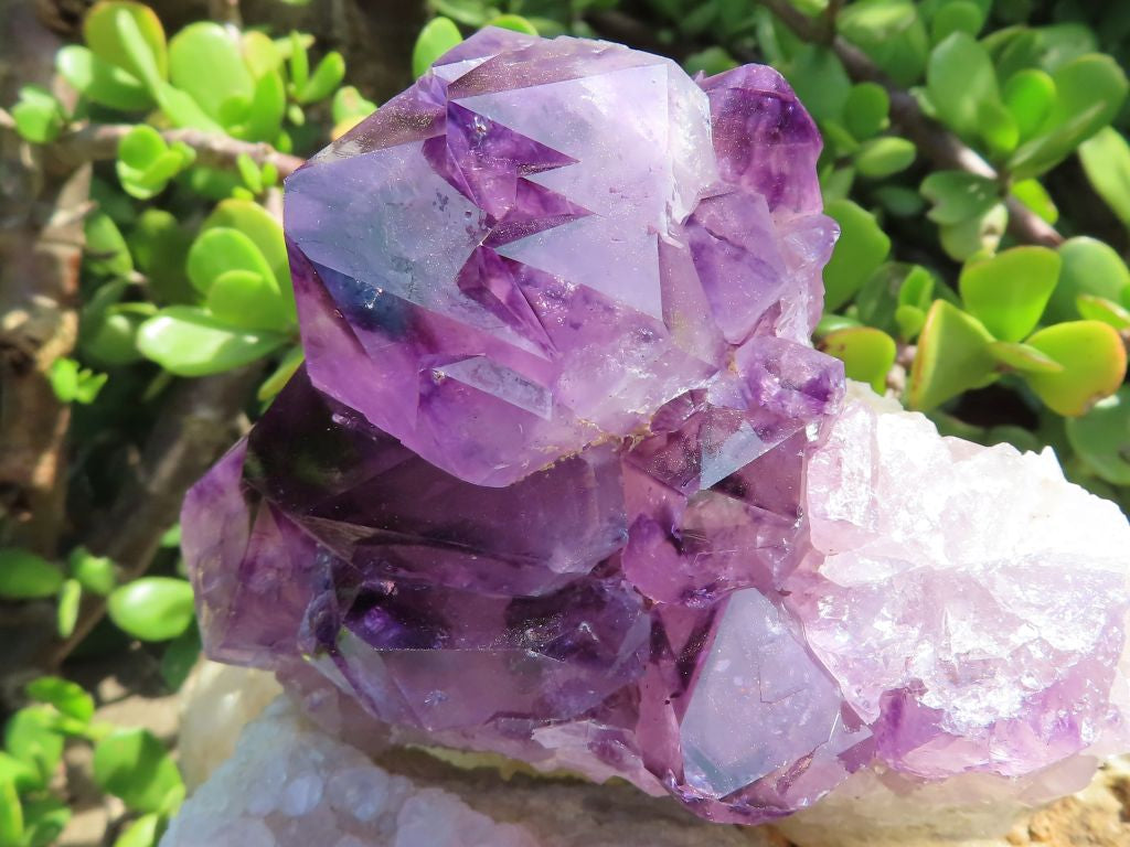 Natural Deep Purple & Lilac Amethyst Spirit Quartz Clusters x 2 from KwaNdebele, South Africa
