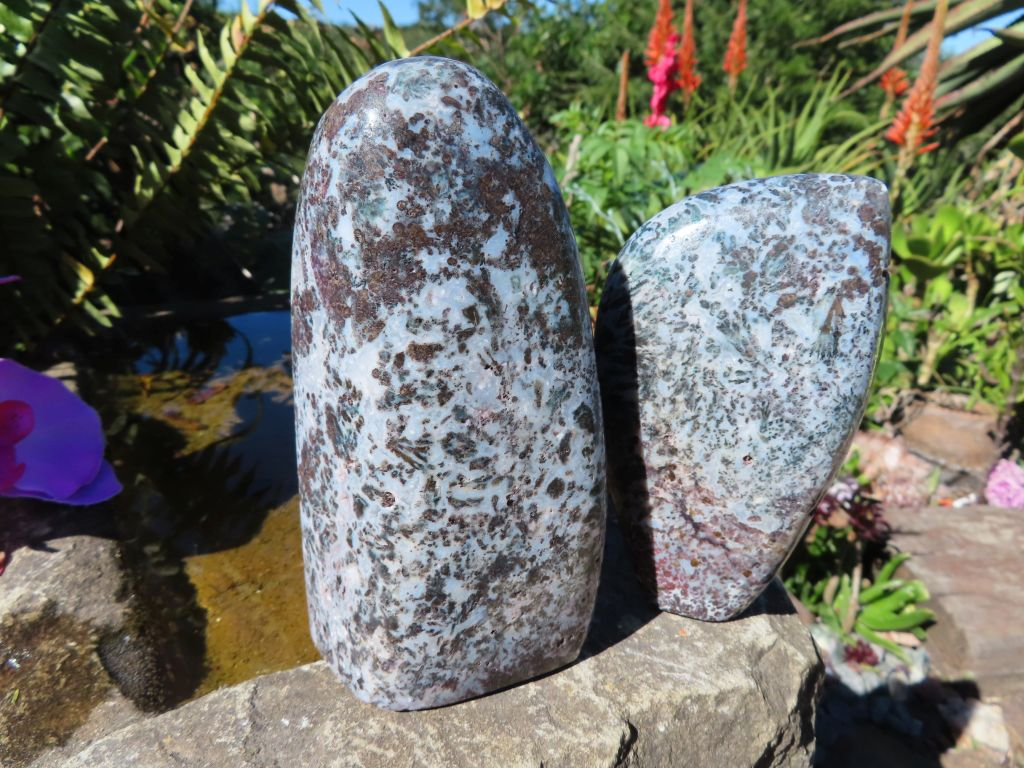 Polished White & Brown Lacey Patterns Flower Jasper Free Forms x 2 from Namibia
