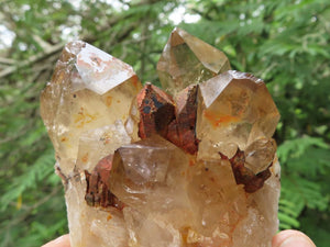 Natural Cascading Citrine Quartz Crystals x 6 from Lwena, Congo