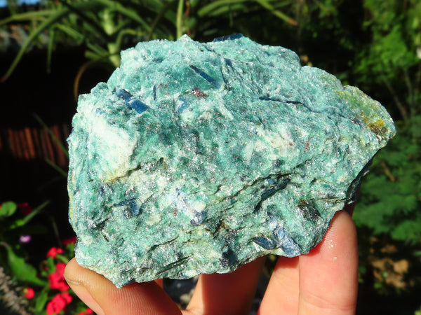 Natural Medium Green Fuchsite & Blue Kyanite Specimens x 12 from Kariba, Zimbabwe