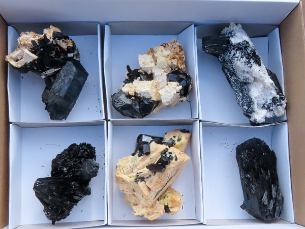 Natural Medium to Large Froijite Black Tourmaline & Feldspar With Quartz Specimens x 6 from Erongo, Namibia
