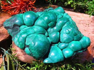 Natural Botryoidal Solid Malachite Specimen x 1 from Kolwezi, Congo