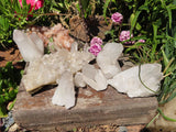 Natural Etched Quartz Crystal Clusters x 6 from Madagascar
