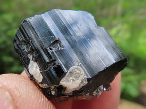 Natural Small Schorl / Black Tourmaline Crystals x 62 from Madagascar