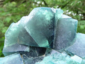 Natural Green Cubic Fluorite Specimens x 2 from Madagascar