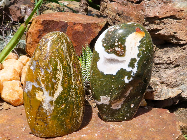 Polished Medium Ocean Jasper Standing Free Forms x 2 from Madagascar