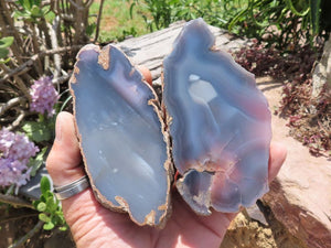 Natural & Polished Agate Slices x 6 from Zimbabwe