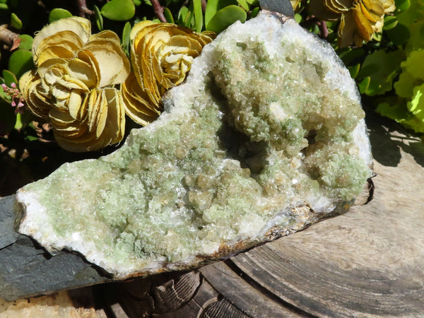 Natural Large Prehnite In Quartz & Calcite In A Basalt Husk Cluster x 1 from Tafelkop, Namibia