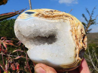 Polished Agate Geode Standing Free Forms x 2 from Madagascar