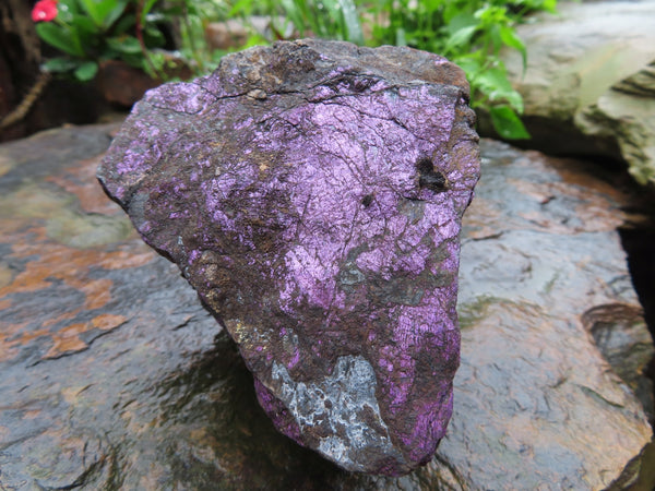Natural Metallic Purple Purpurite Specimens x 2 From Namibia