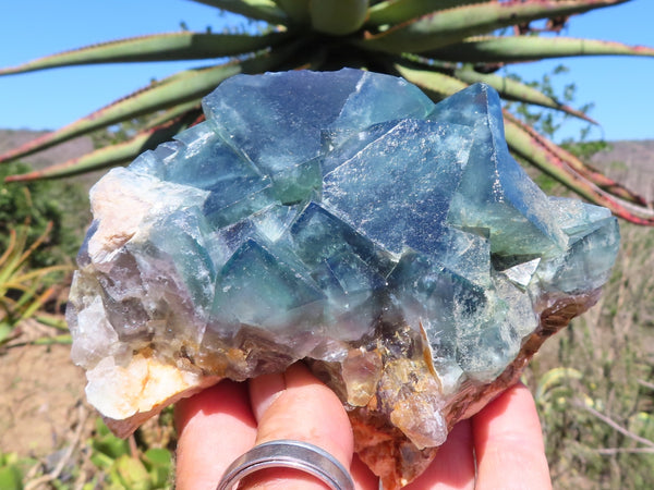 Natural Large Fluorite Specimens x 6 from Mandrosonoro, Madagascar