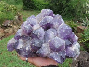 Natural Large Amethyst with Deep Purple Crystal Cluster x 1 from Kolomo, Zambia
