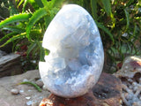 Polished Blue Celestite Crystal Geode Centred Eggs x 2 from Madagascar