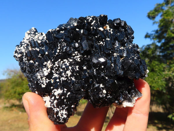 Natural Classic Schorl Black Tourmaline Single Crystal or Clusters x 6 from Erongo, Namibia