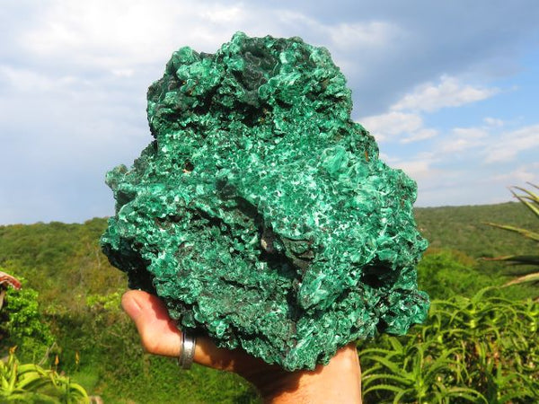 Natural XL Silky Malachite Display Piece x 1  from Sakoany, Madagascar