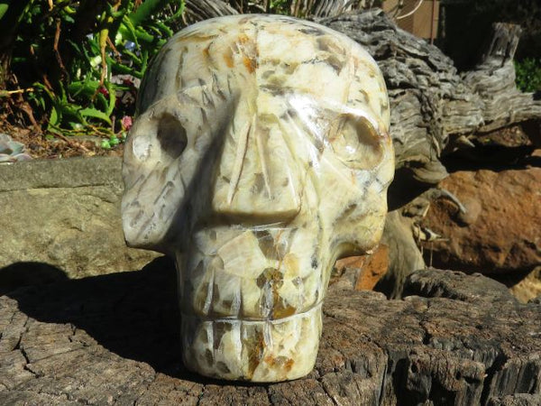 Polished Tiger Feldspar Alien Skull Carving x 1  from Madagascar
