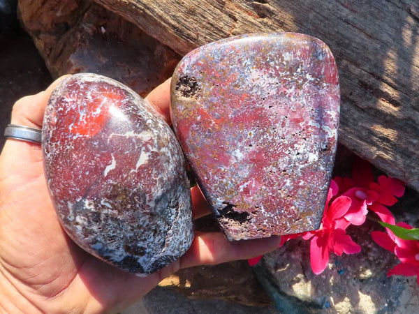 Polished Brecciated Red Flower Jasper Standing Free Forms x 2 from Skeleton Coast, Namibia