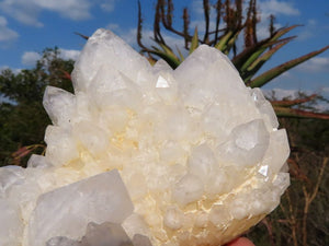 Natural Castle Quartz Clusters x 6 from Ivato, Madagascar