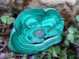 Polished Malachite Slices x 6 from Congo