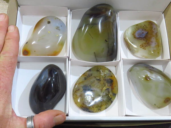 Polished Dendritic Agate Free forms x 6 from Marolambo, Madagascar - TopRock