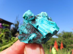 Natural Mixed Minerals x 12 from Southern Africa